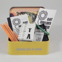 Sunflower Growing Kit in a Tin