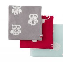 Organic Cotton Owl Blanket